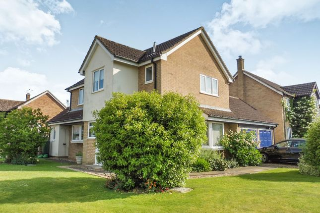 Thumbnail Detached house for sale in Millfield Road, Barningham, Bury St. Edmunds
