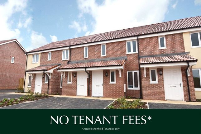 Thumbnail Terraced house to rent in Brooklyn Close, Exeter