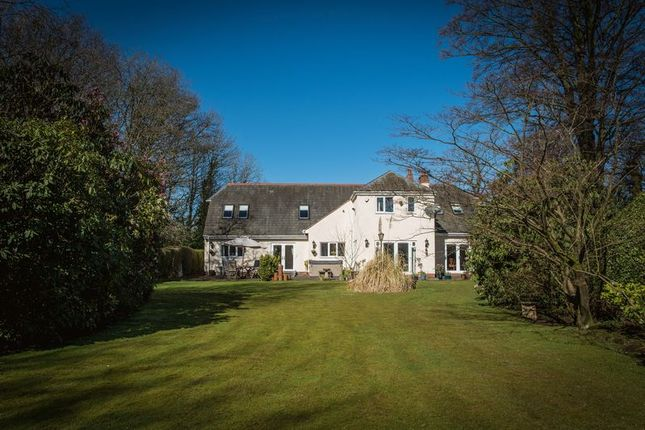 Thumbnail Detached house for sale in Earlswood Common, Earlswood, Solihull