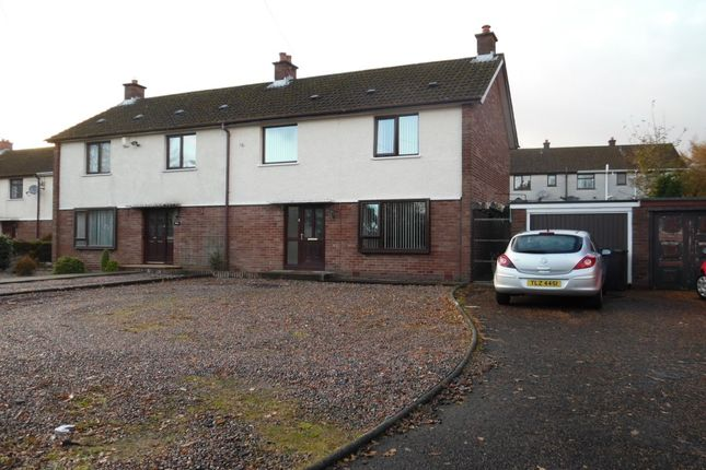 Thumbnail Semi-detached house to rent in Avondale Drive, Ballyclare