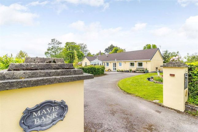 Thumbnail Bungalow for sale in Pettymarsh Lane, St Briavels, Lydney