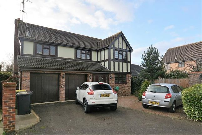 Thumbnail Detached house for sale in Spencers, Hockley