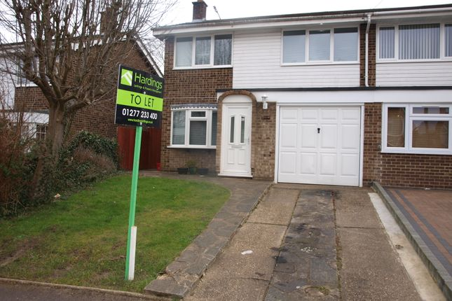 Thumbnail Semi-detached house to rent in Pennyfields, Brentwood