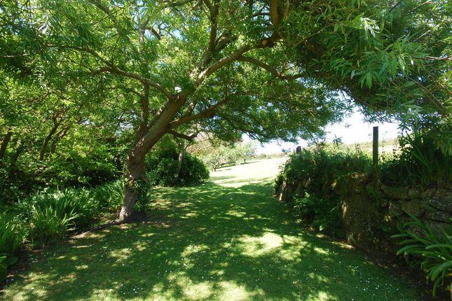 The Gardens of Churchtown, St. Levan, Penzance TR19