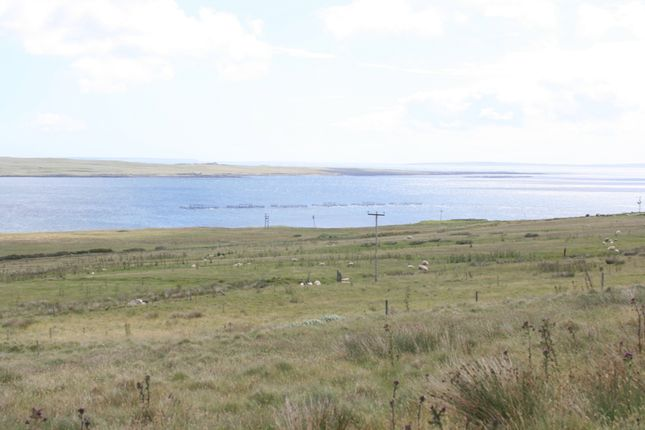 Thumbnail Land for sale in Redlums (Land Near), Rousay, Orkney