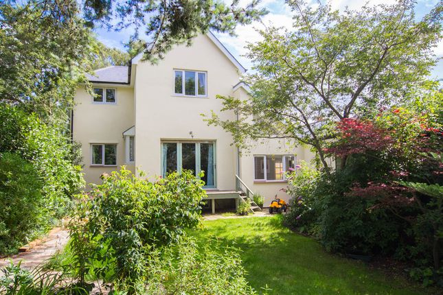 Thumbnail Detached house for sale in Cambridge Road, Great Shelford, Cambridge