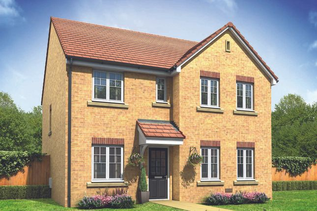 "Thumbnail Detached house for sale in ""The Mayfair"" at Bridgend Road, Llanharan, Rhondda Cynon Taff, Pontyclun"