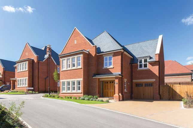 "Thumbnail Detached house for sale in ""The Aspen"" at Butterwick Way, Welwyn"