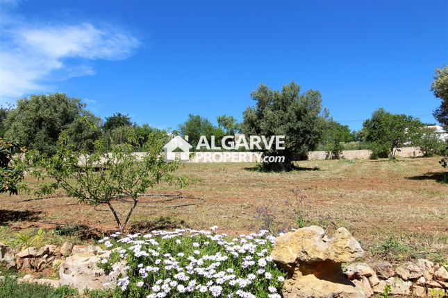 Thumbnail Property for sale in 8100 Boliqueime, Portugal
