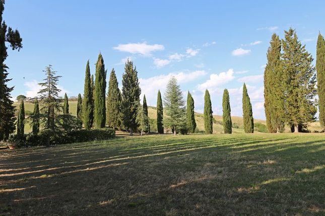 Piandolmo Montepulciano Back Garden