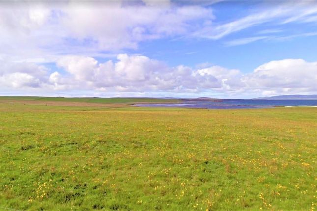 Land for sale in Balfour, Orkney KW17