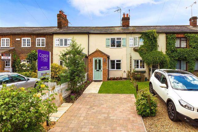 Thumbnail Terraced house to rent in Tyttenhanger Green, St Albans, Hertfordshire
