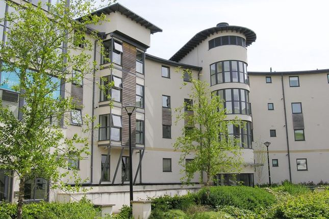 Thumbnail Flat to rent in Rowan Court, Seacole Crescent, Swindon