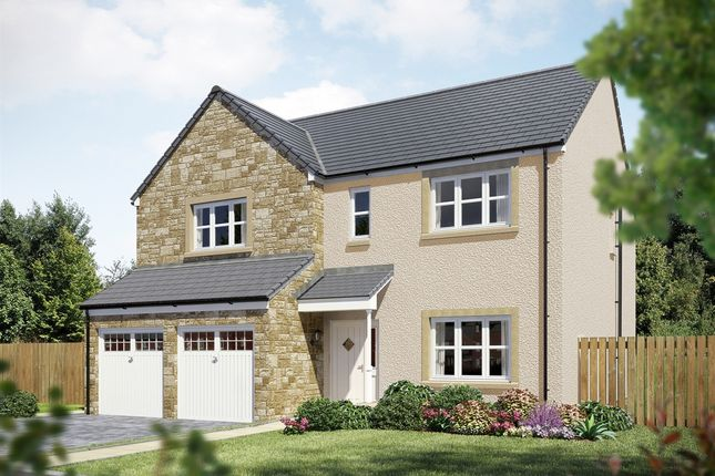 "Thumbnail Detached house for sale in ""The Dryden"" at East Calder, Livingston"