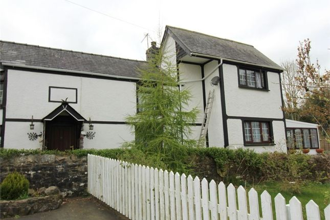 Thumbnail Cottage for sale in Cwrtnewydd, Llanybydder