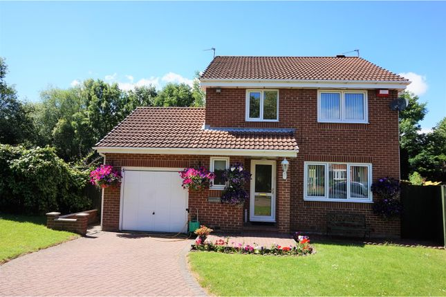 Thumbnail Detached house for sale in Hawthorn Drive, Jarrow