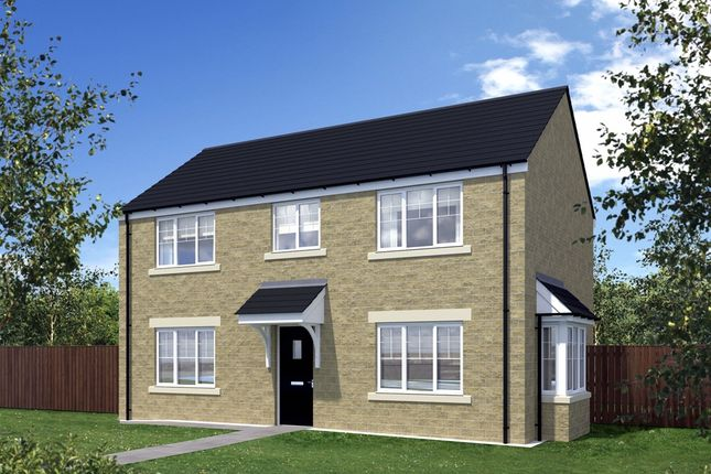 """Thumbnail Detached house for sale in """"Waddesdon"""" at St. Georges Quay, Lancaster"""
