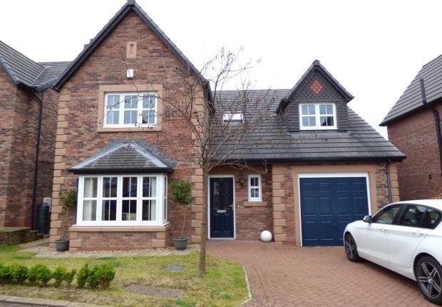 Thumbnail Detached house to rent in Edmondson Close, Brampton, Cumbria