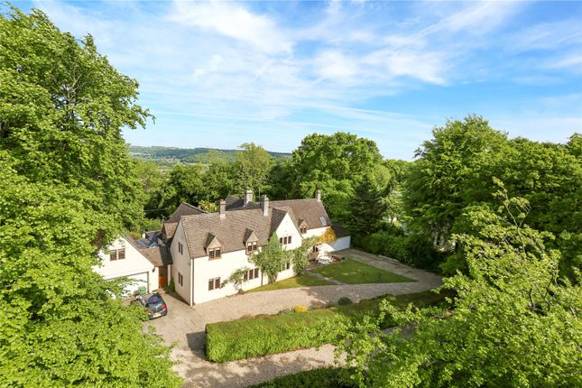 Thumbnail Detached house for sale in Stinchcombe Hill, Stinchcombe, Gloucestershire