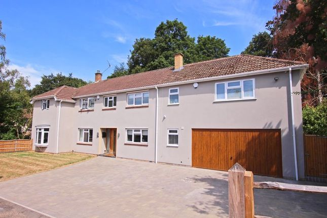 Thumbnail Detached house for sale in Greenbank Crescent, Southampton