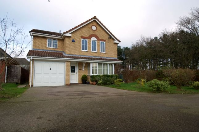 Thumbnail Detached house for sale in Musketeer Way, Dussindale, Norwich