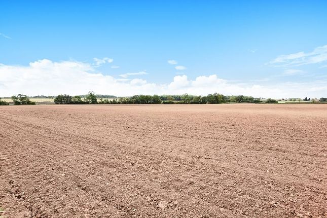 Thumbnail Commercial property for sale in South Sandy Furze, Mutton Lane, Beckingham, Doncaster, South Yorkshire