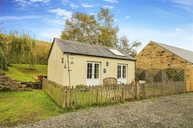 Thumbnail Bungalow for sale in C199 Lane To, Hexham, Northumberland