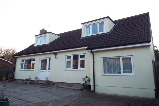 Thumbnail Property to rent in Cornfield Road, Bury St. Edmunds