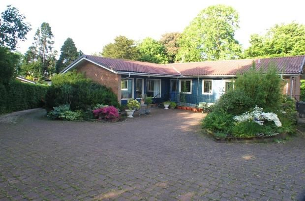 Thumbnail Detached bungalow to rent in Glencart Grove, Kilbarchan, Johnstone, Renfrewshire