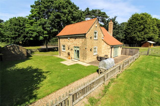 Thumbnail Detached house for sale in Main Road, Barnoldby Le Beck