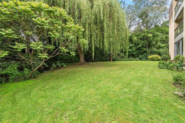 Communual Garden of Pitman Court, Gloucester Road, Bath, Somerset BA1