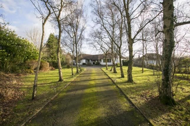 Thumbnail Bungalow for sale in The Broyle, Shortgate, Lewes, East Sussex