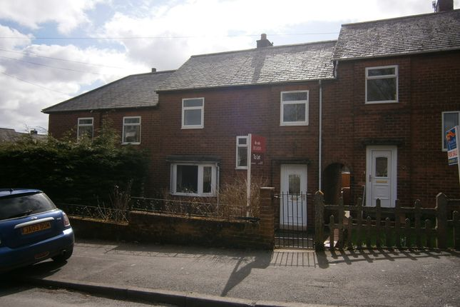 Thumbnail Terraced house to rent in Greencroft Avenue, Haltwhistle