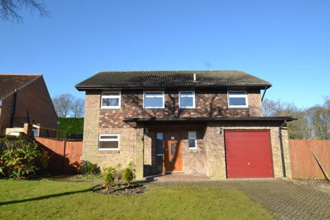 Thumbnail Detached house for sale in Kirkdale Close, Lordswood, Chatham