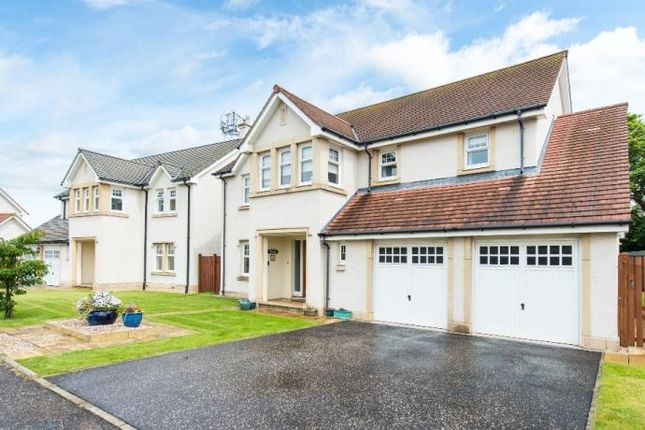 Thumbnail Detached house to rent in Stair Park, North Berwick