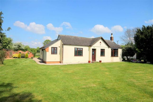 Thumbnail Detached bungalow for sale in Orchard End, Staunton, Gloucester