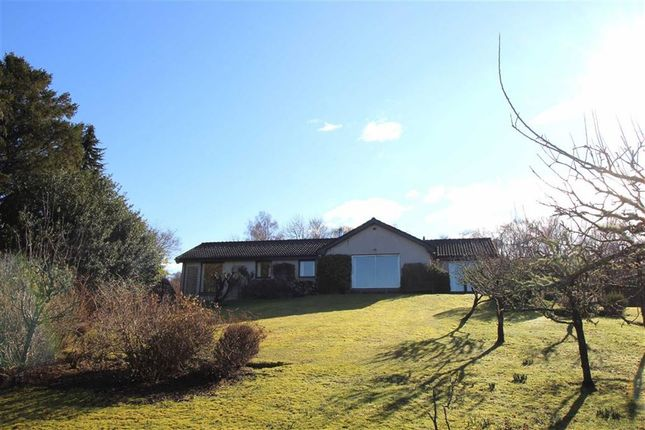 Thumbnail Detached bungalow for sale in Culloden Road, Westhill, Inverness