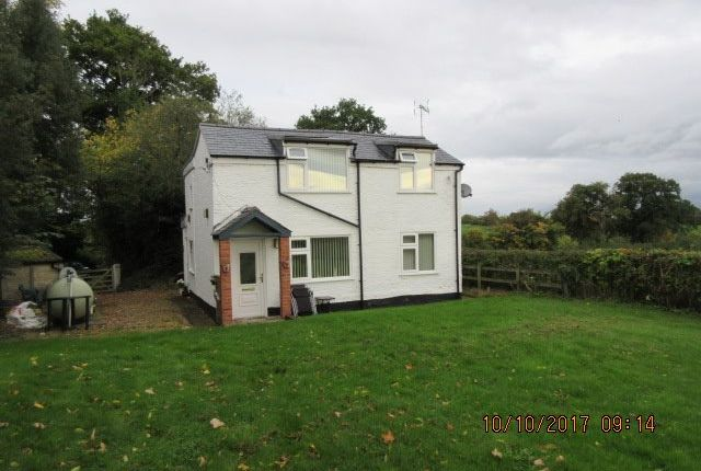 Thumbnail Detached house to rent in Erbistock, Wrexham