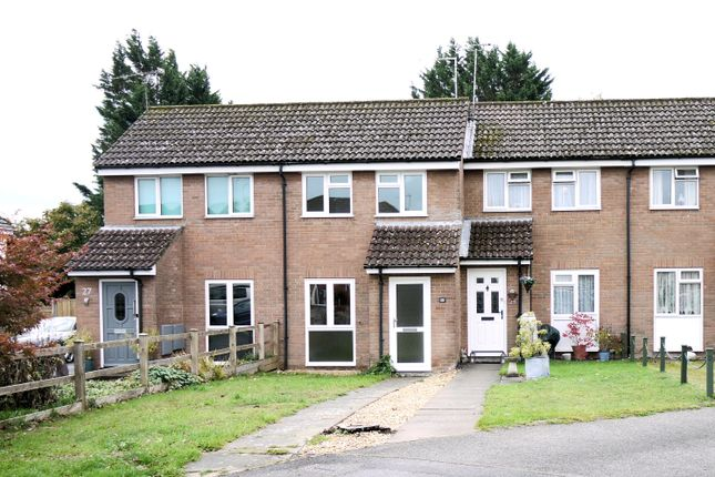 Thumbnail Terraced house to rent in Gaskell Close, Holybourne