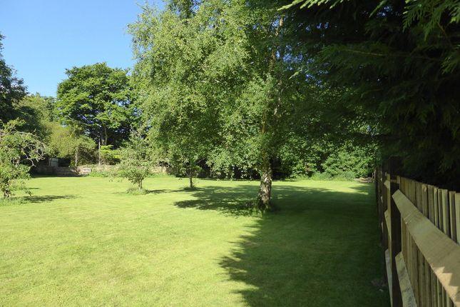 Thumbnail Land for sale in Sandhill Lane, Crawley Down
