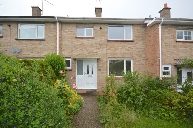 Thumbnail Property to rent in Stanes Road, Braintree