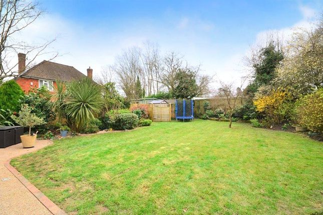 Garden of Lewes Road, East Grinstead, West Sussex RH19