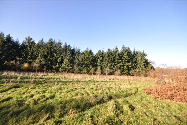 Thumbnail Land for sale in Fernhurst, Haslemere