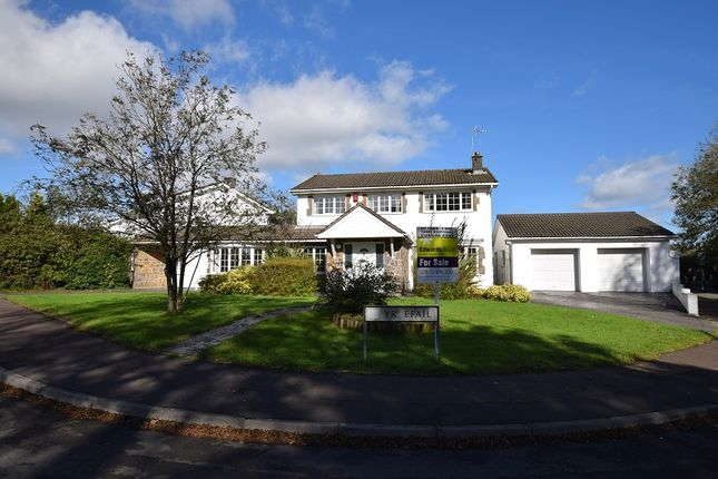 Thumbnail Detached house for sale in Yr Efail, Treoes, Bridgend.
