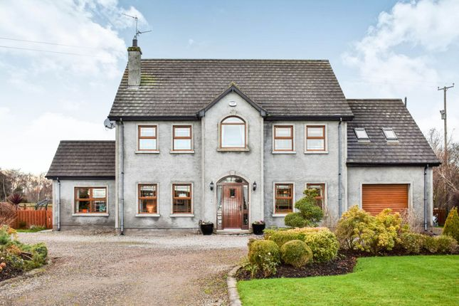 Thumbnail Detached house for sale in Byrnes Rampart, Derrytrasna, Lurgan