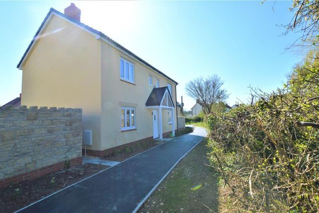 Thumbnail Detached house for sale in Maple Road, Curry Rivel, Somerset