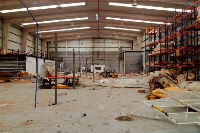 Thumbnail Industrial for sale in Granadilla De Abona, Granadilla De Abona, Tenerife, Canary Islands, Spain