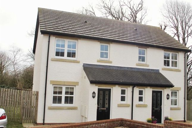 3 bed semi-detached house to rent in Mabel Wood Close, Great Clifton, Workington