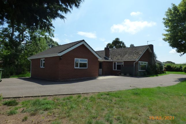 Thumbnail Detached bungalow to rent in Church Road, Aldeby, Beccles