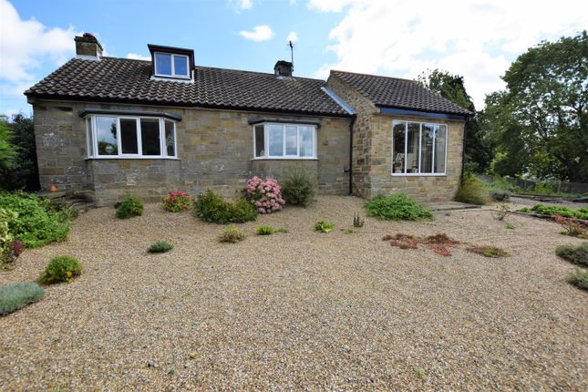 Thumbnail Detached bungalow for sale in Great Edstone, York